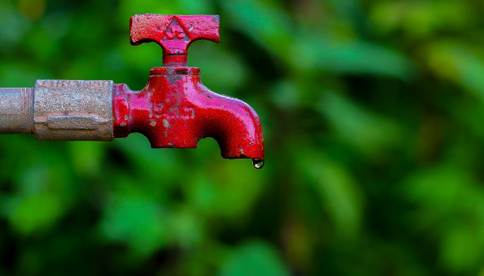 Smart ways to save water in the summer